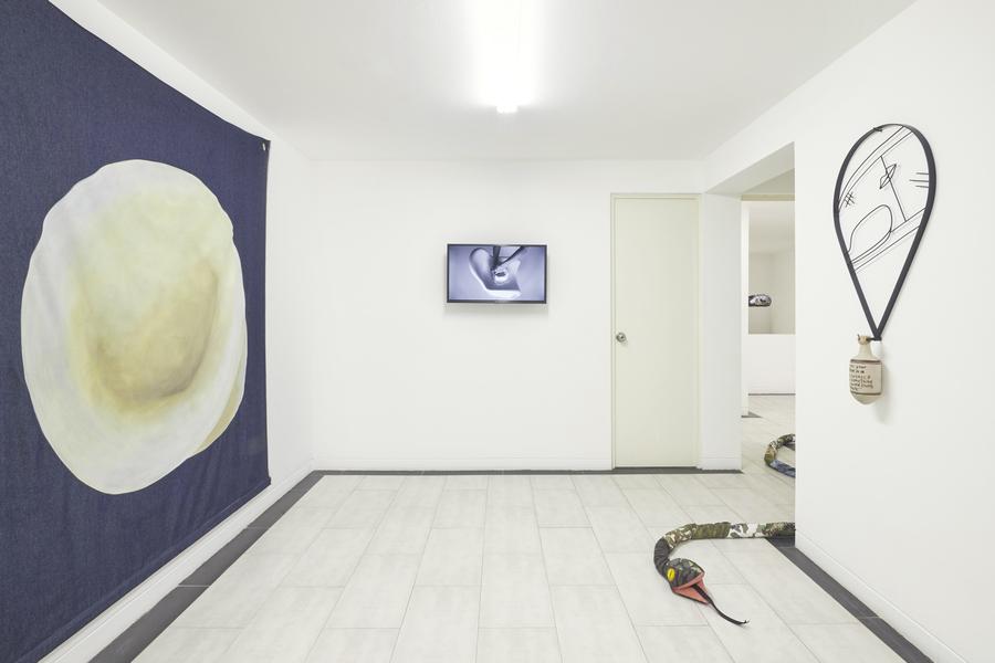 """Vista de la exposición """"El barro, la culebra y sus principios"""", de Ana Navas, en Crisis Galería, Lima, 2019. Foto cortesía de la galería"""