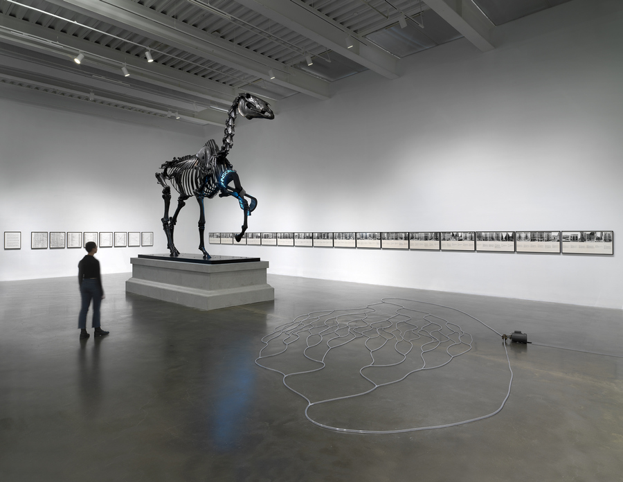 """Hans Haacke: All Connected,"" 2019-2020. Exhibition view: New Museum, New York. © Hans Haacke / Artists Rights Society (ARS), New York. Photo: Dario Lasagni"