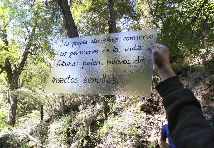 """Alicia Villarreal. Registro del proyecto """"La reinvención del territorio"""", Chile, 2019. Cortesía de la artista"""