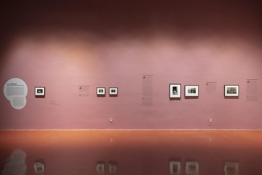 """Vista de la exposición """"Sol Negro"""", en el Centro de la Imagen, Ciudad de México, 2019-2020."""
